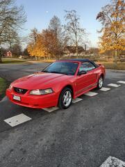 Mustangs 1994 - 2004